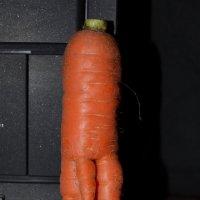 Странная морковка :: Сергей Тагиров