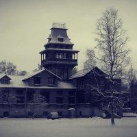 Зима :: Алексей Глушко