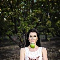Newton's apple :: Alex Lerner