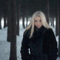 лесок :: Илья Родионов