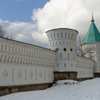 Николо-Угрешский монастырь. Белокаменная стена с башнями :: elena manas