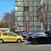 Восемь машинок в одном кадре :: Нина Корешкова