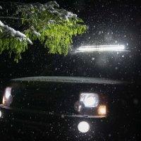 А снег идет... :: Майя Бреннер