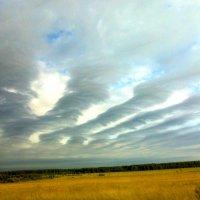 Небо :: Ольга