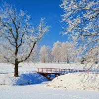 Последний день зимы. :: Paparazzi
