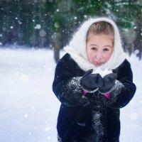 снежок :: Ванда Азарова