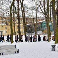 Прогулка по Лопухинскому саду :: Юрий Тихонов