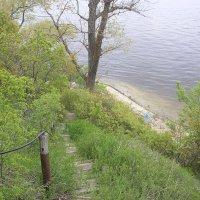 Высокий правый берег :: Булаткина Светлана