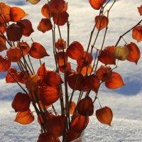 Последний день зимы :: Mariya laimite