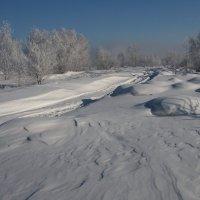 Замело пути-дорожки... :: Александр Попов