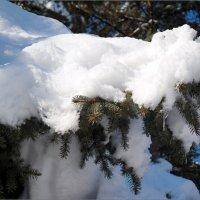 Спадают снежные оковы :: Андрей Заломленков
