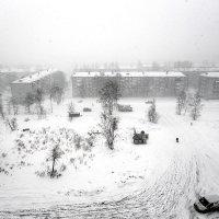 Зима решила оставаться... :: Алексей Белик