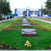9 мая. :: Береславская Елена