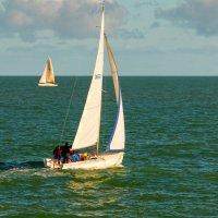 Тренировка яхтклуба :: Дмитрий Сорокин