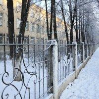 Зима в городе :: Мария Кухта
