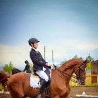 Рыжий конь :: Александра Карпушкина