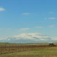 а ведь уже весна.. :: Армен Джавакян