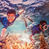 В аквариуме :: Лёша