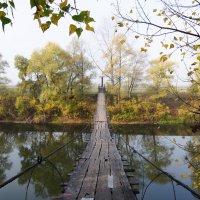 Висячий мост над рекой Демой. Осень. :: Сергей Тагиров