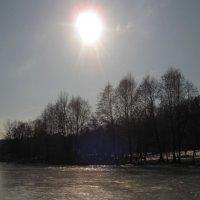 Вот такой февраль. :: Лена Минакова