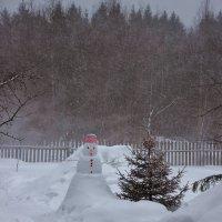 Зима злится. :: Галина .