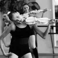 танго со скрипкой :: виктор омельчук