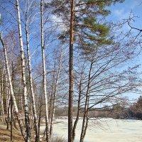Лед тронулся :: Лидия (naum.lidiya)