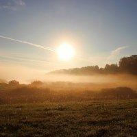 Оранжевый туман. :: Нина