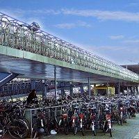 велостоянка в Амстердаме :: Александр Корчемный