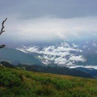выше облаков :: Elena Wymann
