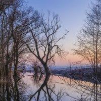 Утро на реке Грунь :: Сергей Корнев