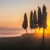 """В ЛУЧАХ ВОСХОДЯЩЕГО СОЛНЦА. Из серии """"Toscana - amore mio"""" :: Ашот ASHOT Григорян GRIGORYAN"""