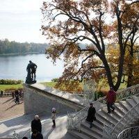 Вид на Большой пруд с Камероновой галереи :: Елена Павлова (Смолова)