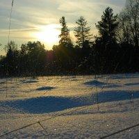 Зима :: Федор Пшеничный
