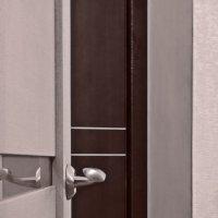 doors :: Павел Самарович