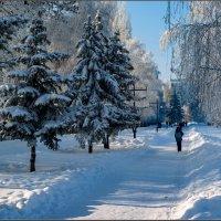Зимняя прогулка :: Александр Лихачёв