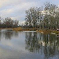 На реке. :: Валентина ツ ღ✿ღ