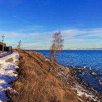 Берег озера :: Анатолий Иргл