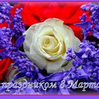 С наступающим,милые дамы ! :: nadyasilyuk Вознюк