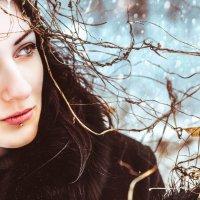Winter story :: Игорь Попов