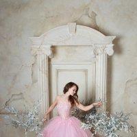 Платье Золушки :: Анита Гавриш