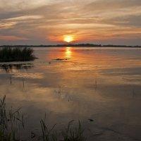 Red sunset :: Roman Ilnytskyi