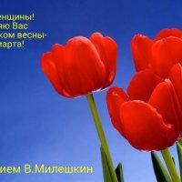 К Дню 8-е марта :: Милешкин Владимир Алексеевич