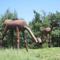 Чешские жирафы (Троя,Ботанический сад) :: Marina Mikhailova