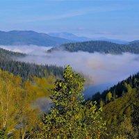 Крадутся по долине туманы :: Сергей Чиняев