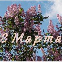С  праздником! :: Весна