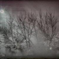 Мрачное утро уходящей зимы :: Роман Титов