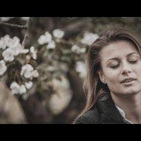 Кадр из кино 1 :: Дмитрий Филиппов