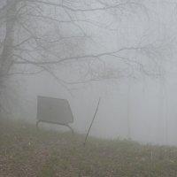 туман :: Александр Пикалов