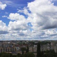 Утром, после дождика... :: Yuriy F